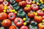 Freddo siberiano, prezzi di frutta e verdura schizzano alle stelle