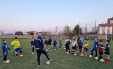 Allenamenti fermi, formazione online con l'Udinese Academy