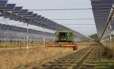 Green energy dal parco fotovoltaico