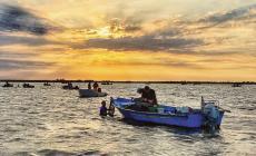 """La disperazione dei pescatori: """"Raccolti distrutti dal maltempo"""""""