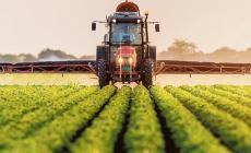 Il futuro dell'agricoltura? Sensori e biotecnologie