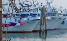 """""""Raddoppio del fermo pesca: rovinoso"""""""