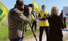 Impianto fotovoltaico: il pic nic di protesta in zona rossa