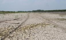 Allarme siccità: il Po in secca preoccupa soprattutto l'Altopolesine