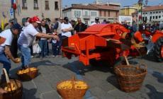 Trattori e bellezze sfilano in passerella  <br/> alla 409ª Fiera di San Marco
