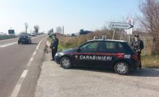 Denunce e controlli dei carabinieri <br/> lungo le strade del Polesine