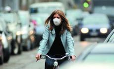 Quattro ruote e tanta C02   <br/> in Polesine troppe auto inquinanti