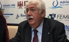 Asd Baseball Rovigo, Alessandro Boniolo è di nuovo presidente