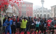 """Quasi 1200 partecipanti per la """"Rovigo in Love"""""""
