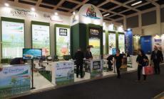 Fruit logistica di Berlino, Insalata Igp: un successo mondiale