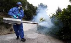 Tecniche ecosostenibili per eliminare ratti e zanzare