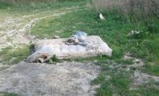 Oasi di Panarella, golena trasformata in discarica