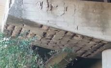 Piloni a rischio in Transpolesana, l'Anas tace