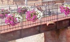 """Badia, i """"killer"""" dei fiori tornano in azione"""