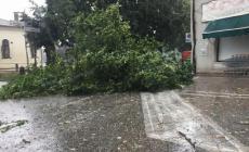 Un temporale violentissimo si è abbattuto sul Polesine