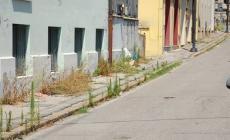 Buche e rifiuti: sale la protesta per via Gherardini