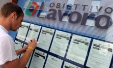 Le offerte di lavoro a Rovigo