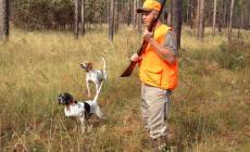 Vita dura per i cacciatori violenti