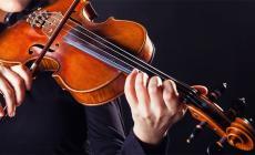 Violino in castello in Accademia
