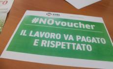 """Cisl: """"No ai voucher in agricoltura"""""""