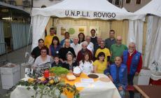 Sapori in piazza, Rovigo presa per il palato
