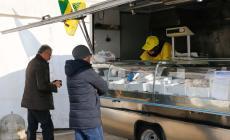 Terminato il fermo pesca, torna il pesce fresco al mercato coperto