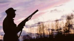 Presa a fucilate e ferita da un cacciatore mentre passeggia