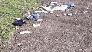 Multati i vandali dell'ambiente