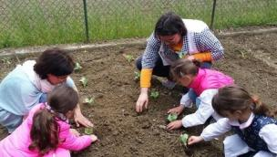 La scuola materna di Baricetta<br/>si trasforma in agriasilo
