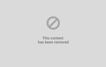 La crisi spinge le adozioni di cani e gatti