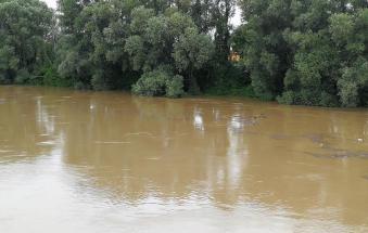 L'Adige si ingrossa, arriva la piena nei prossimi due giorni