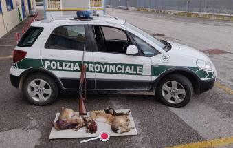 Cacciavano con richiami vivi e troppo vicini alle case: sanzionati in 32 nella prima domenica di caccia