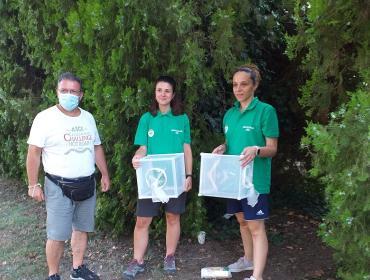 La lotta alle zanzare si fa con i maschi sterilizzati (che non ci pungono)